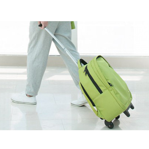 Sport Gym Nylon Wheeled Duffel